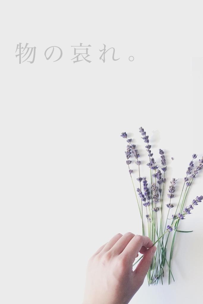 02_mononoaware