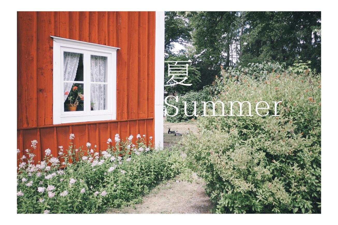 2018_02_summer